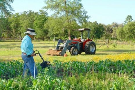 تفسير حلم رؤية من يحرث ويزرع ويحصد في المنام Planting