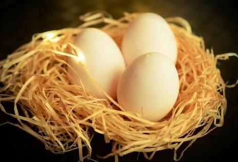 تفسير رؤية البيض صفار بياض في الحلم أو المنام لابن سيرين
