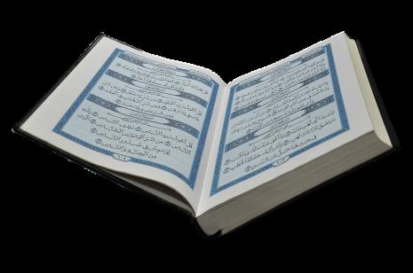 قراءة سور القرآن الكريم أو تلاوة آية في المنام