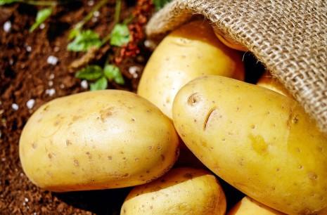 تفسير رؤية البطاطا أو البطاطس في المنام