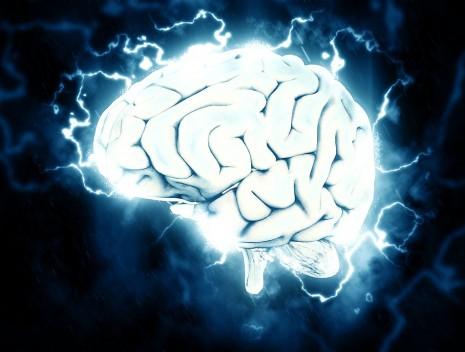 رؤية الدماغ أو اكل المخ في المنام لابن سيرين