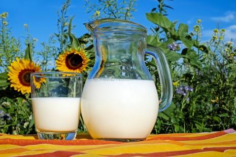 رؤية شرب لبن أو حليب البقر في المنام