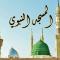 تفسير رؤية المسجد النبوي في المنام