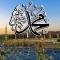 تفسير رؤية قبر الرسول محمد في المنام